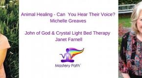 Animal Healing – Michelle Greaves & Human Healing – Janet Farnell