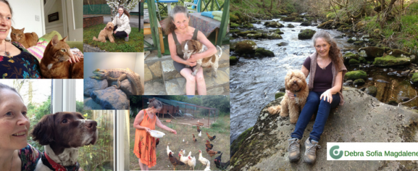 Debra's House free lifestyle as a House & Pet Sitter (and companion)